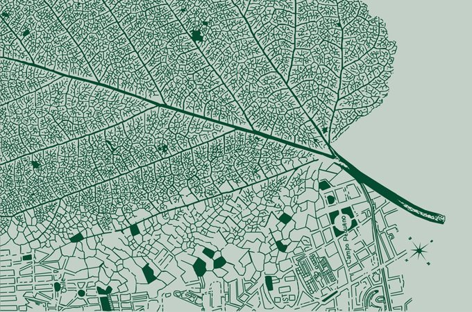 This is how much an urban forest is worth
