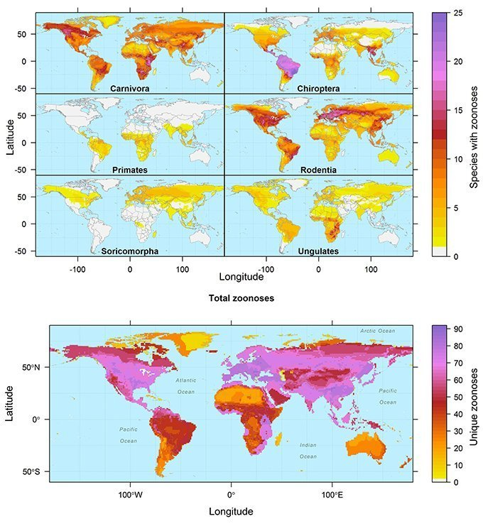 Above: More zoonotic hosts live in the tropics. Below: More zoonotic diseases show up in temperate zones.