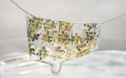 Totally biodegradable electronics could help solve e-waste problem