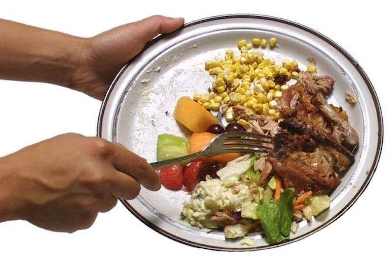 Método rápido y eficaz para transformar la comida en combustible