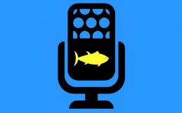 Recording fish song to make our fisheries more sustainable