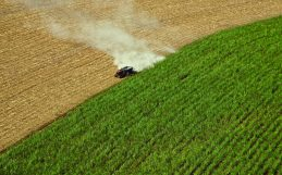 How to farm biofuels without harming food security