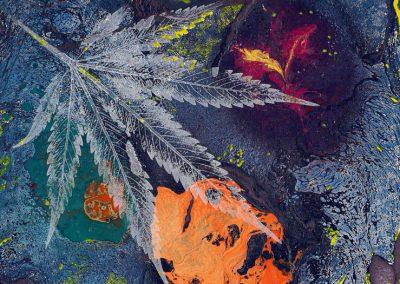 Confronting the environmental cost of marijuana