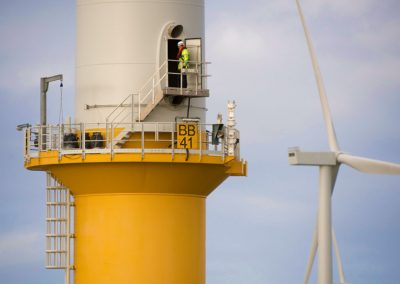 Offshore wind farms could change ocean ecosystems in unexpected ways