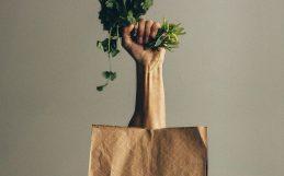 L'agriculture biologique peut-elle nourrir la planète de manière durable?