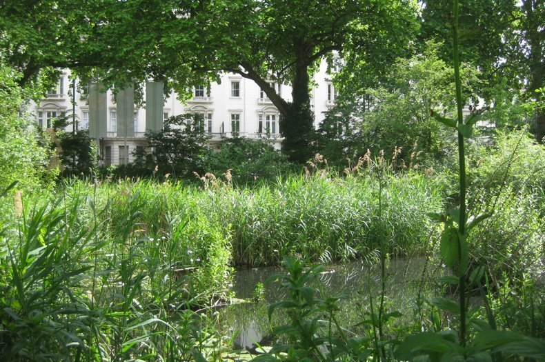 A New Tool for Planning Biodiversity in Small Spaces