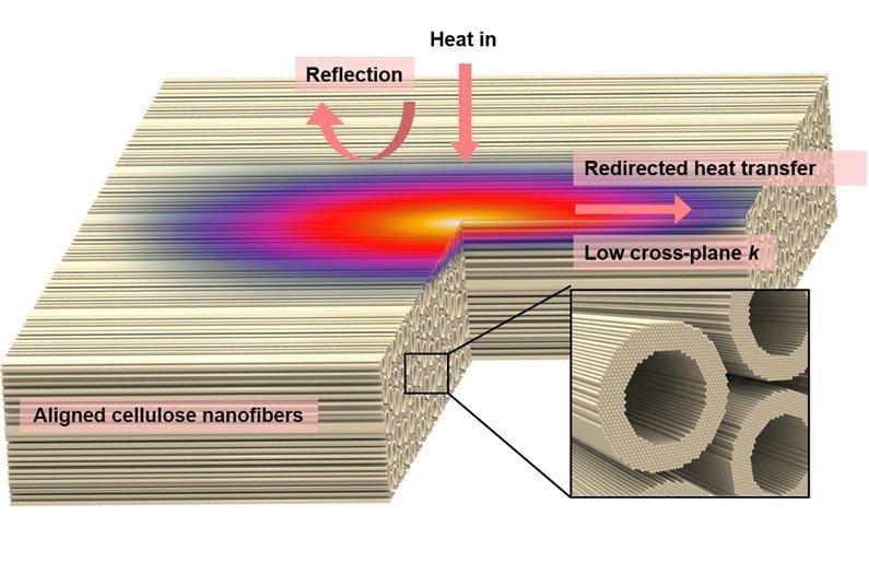 This is nano wood—an ecofriendly alternative to styrofoam
