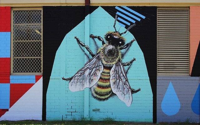 Big city parks host thriving bee scene