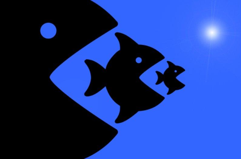 Comer pescado no es una estrategia sostenible para la acuacultura en el Antropoceno