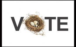 En una democracia, ¿debería la naturaleza tener un voto?