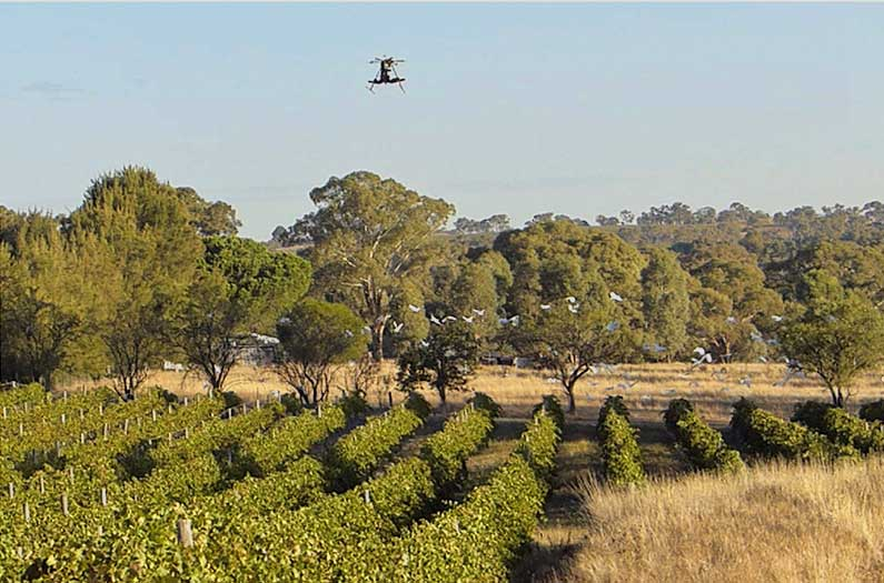 Scary Drones keep peace between birds and farmers