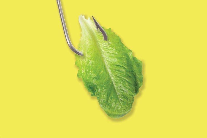Feeding plant food to farmed fish isn't as green as it seems