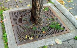 City trees reduce daytime heat. But to curb sweltering nights, minimize pavement.