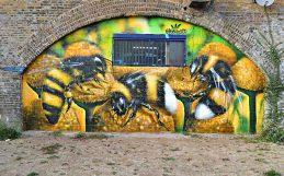 Los «terrenos baldíos» son un paraíso para las abejas.