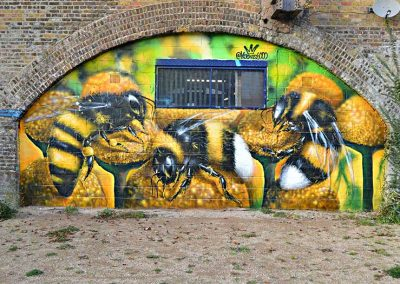 "Urban ""wastelands"" are a paradise for bees"