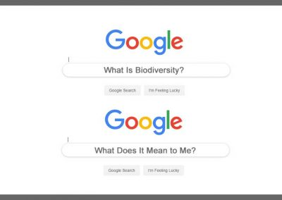 Many people don't know what biodiversity means