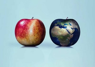 A diet that's good for you is also good for the planet—and vice versa