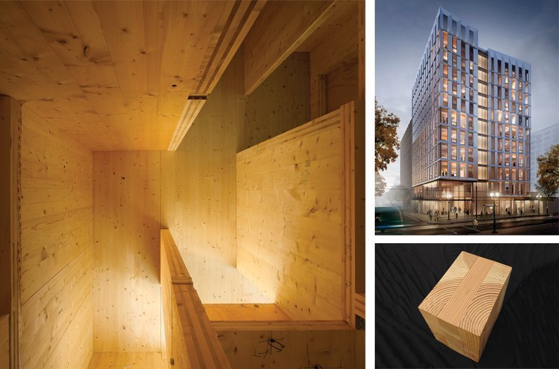 The Rise of the Wooden Skyscraper