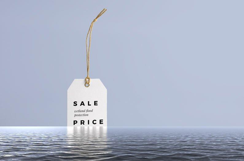 Colocar um preço na redução do impacto das cheias pelas zonas húmidas