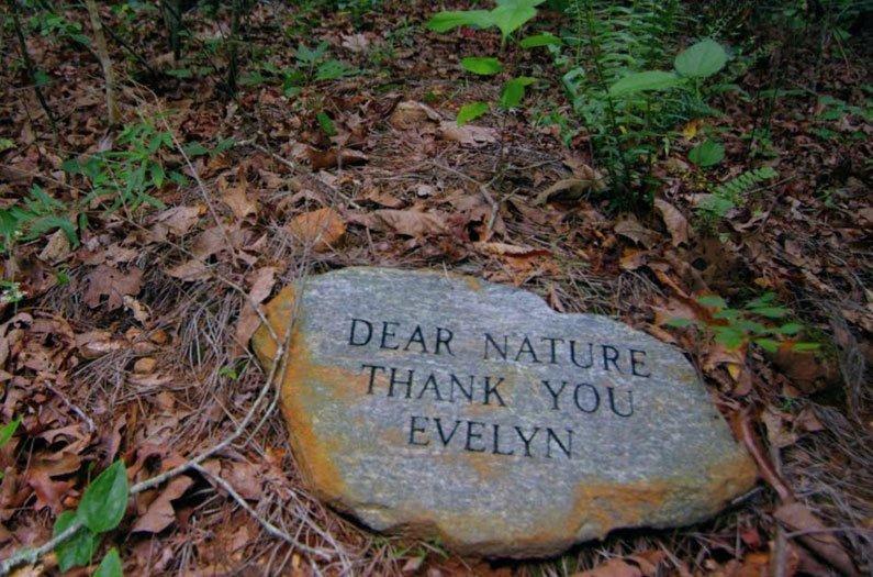 Les enterrements de conservation pourraient transformer la mort en une force vitale