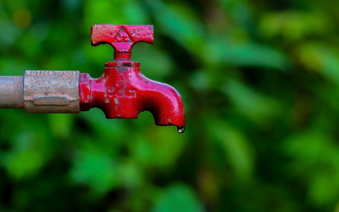 Podríamos alimentar a miles de millones más de personas si utilizamos el agua de forma más sostenible.