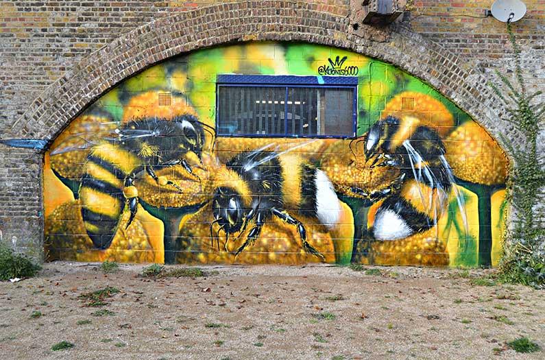 """Los """"terrenos baldíos"""" son un paraíso para las abejas."""