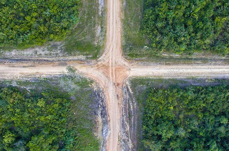 Esta hoja de ruta del uso de la tierra podría llevarnos al 30% del camino hacia un objetivo global de emisiones