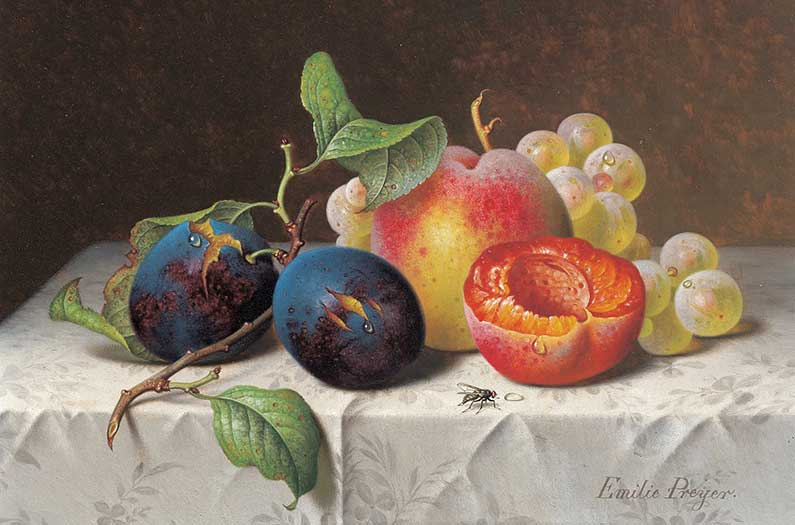 emilie_preyer_fruit