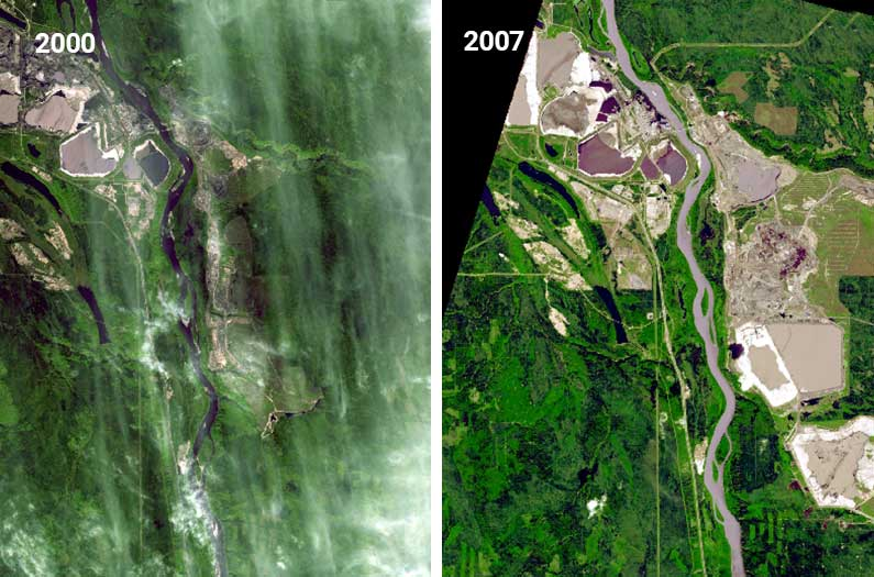 Using satellite imagery, researchers have built an automatic habitat loss detector