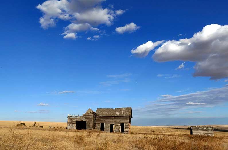 Can vacant farmland sustainably fulfill the world's biofuels needs?