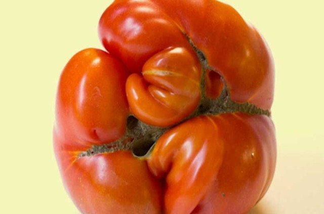 'Ugly produce' is having a marketing moment
