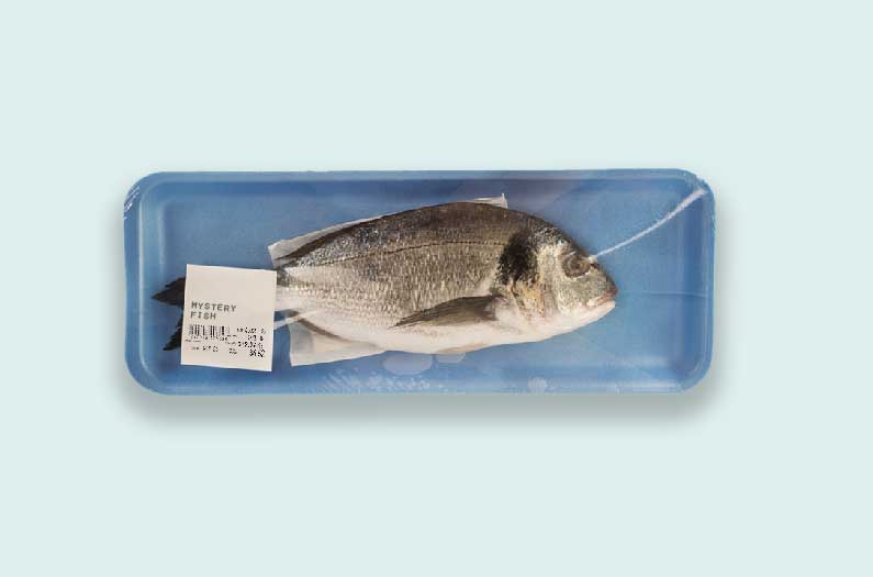 Researchers repurpose a medical tool to expose seafood fraud